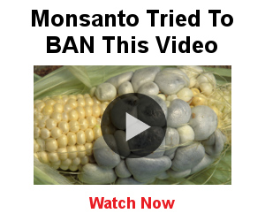 Monsanto Video