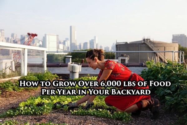 urban-farmingFB