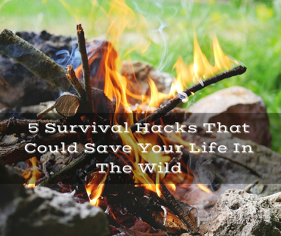 5 Survival Hacks That Could Save Your Life In The Wild