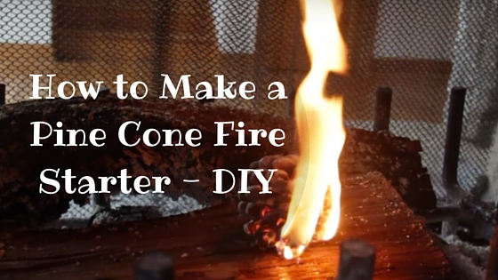 How to Make a Pine Cone Fire Starter - DIY