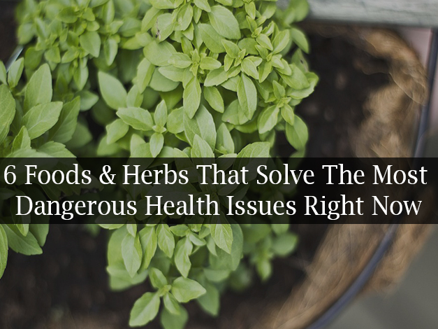 6 Foods & Herbs That Solve The Most Dangerous Health Issues Right Now