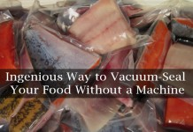 how to vacuum seal food without a machine